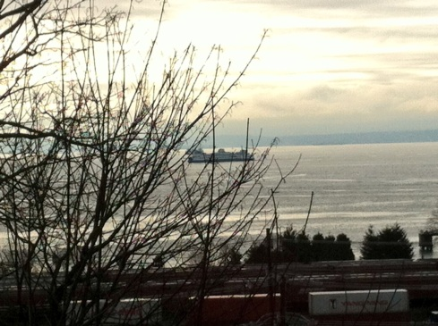 View of Elliott Bay from Lower Queen Anne.